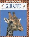 Giraffe Habitats, Life Cycles, Food Chains, Threats