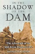 In the Shadow of the Dam The Aftermath of the Mill River Flood of 1874