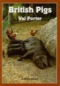 British Pigs - Val Porter - Paperback