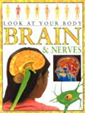 Brains (Look at Your Body)