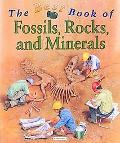 Best Book of Fossils, Rocks & Minerals