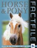 Horse & Pony Factfile