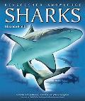 Sharks (Kingfisher Knowledge Series)