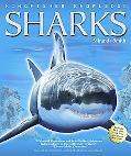 Kingfisher Knowledge: Sharks