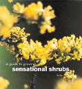 Guide to Growing Sensational Shrubs