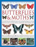 The Illustrated World Encyclopedia of Butterflies and Moths: A Natural History and Identific...