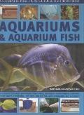 Aquariums and Aquarium Fish: A Complete Practical Guide & Fish Identifier