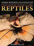 Dwarf Geckos, Rattlesnakes & Other Reptiles