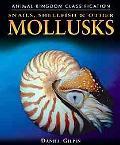 Snails, Shellfish, & Other Mollusks