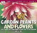 Garden Plants & Flowers
