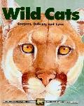 Wild Cats: Cougars, Bobcats and Lynx (Kids Can Press Wildlife (Prebound))