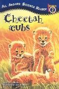Cheetah Cubs (All Aboard Science Reader: Level 2 (Prebound))