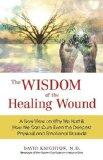 The Wisdom of the Healing Wound: A New View on Why We Hurt & How We Can Cure Even the Deepes...