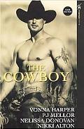 Cowboy Wild Ride / Cowboy in Paradise / Saddle Sore / Rodeo Man