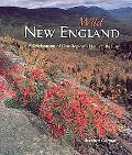 Wild New England A Celebration of Our Region's Natural Beauty
