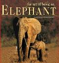 Art of Being an Elephant