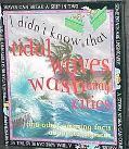 Tidal Waves Wash Away Cities