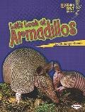 Let's Look at Armadillos