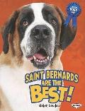 Saint Bernards Are the Best! (The Best Dogs Ever)