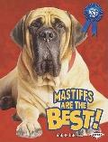 Mastiffs Are the Best! (The Best Dogs Ever)