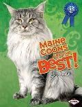 Maine Coons Are the Best! (The Best Cats Ever)