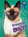 Siamese Are the Best! (The Best Cats Ever)