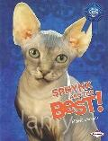 Sphynx Are the Best! (The Best Cats Ever)