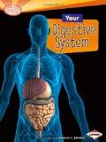 Your Digestive System (Searchlight Books: How Does Your Body Work?)