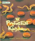 Protoctist Kingdom
