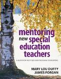 Mentoring New Special Education Teachers A Guide For Mentors And Program Developers