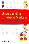Understanding Emerging Markets Building Business Bric by Brick