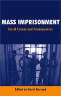 Mass Imprisonment Social Causes and Consequences