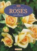 500 Popular Roses for American Gardeners