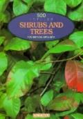 500 Popular Shrubs and Trees: For American Garderners - Barrons Educational Series - Paperback