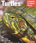 Turtles Everything About Puchase, Care, Nutrition, and Behavior