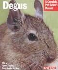 Degus A Complete Pet Owner's Manual