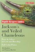 Jackson's and Veiled Chameleons