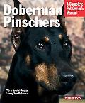 Doberman Pinschers Everything about purchase, care, nutrition, training, and behavior