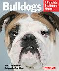 Bulldogs Everything About Health, Behavior, Feeding, and Care