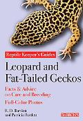 Leopard and Fat-Tailed Geckos