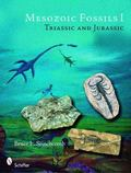 Mesozoic Fossils Triassic and Jurassic