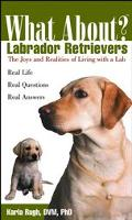What About? Labrador Retrievers