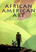 African American Art: The Long Struggle - Barbara Sullivan - Hardcover - Bargain
