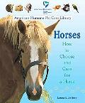 Horses How to Choose and Care for a Horse