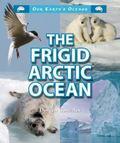 Frigid Arctic Ocean