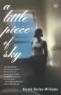 Little Piece of Sky