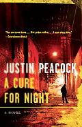 A Cure for Night: A Novel (Vintage Crime/Black Lizard)