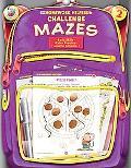 Homework Helper Challenge Mazes, Grade 2
