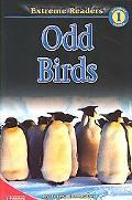 Odd Birds, Level 1