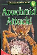 Arachnid Attack!, Level 2